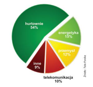 STRUKTURA SPRZEDAŻY GRUPY TELE-FONIKA  W 2013 ROKU
