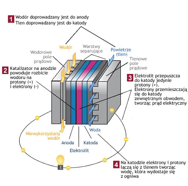 Rys. 5. Ogniwo paliwowe – zasada działania (Źródło: www.ogniwa-paliwowe.info)